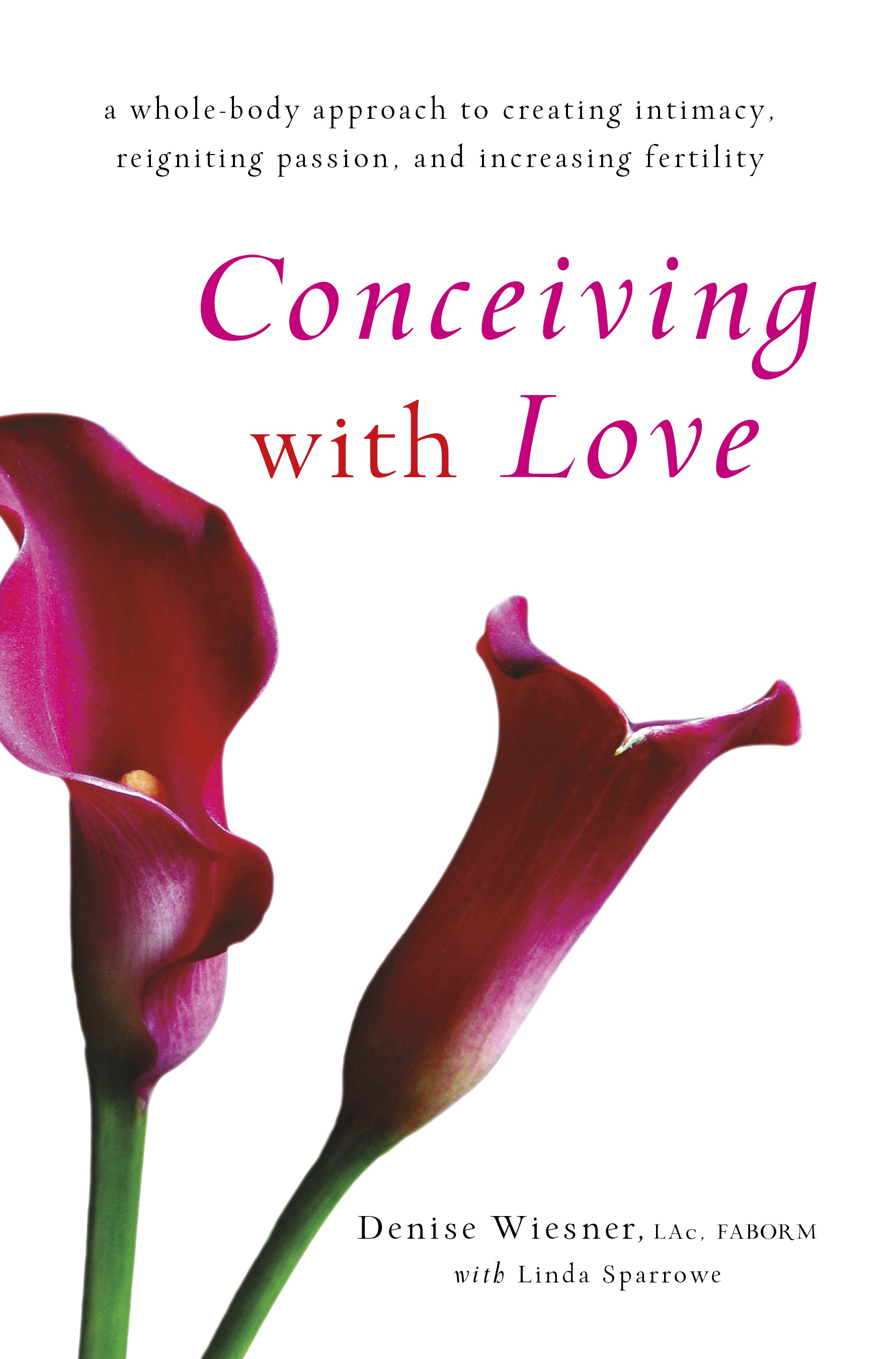 """Conceiving with Love"" by Denise Wiesner: Book Review"